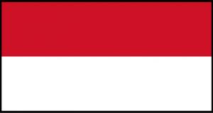 Registrazione Dispositivo Medico in Indonesia